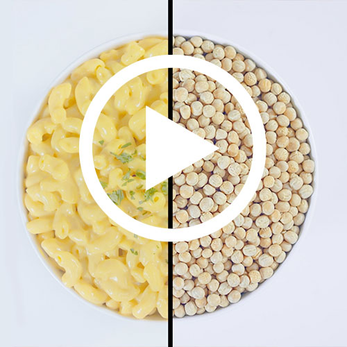 Play Enrichables Pea Protein Video